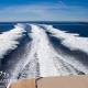 motoryacht-bavaria-450-sport-ht-falcon-korocharter-6